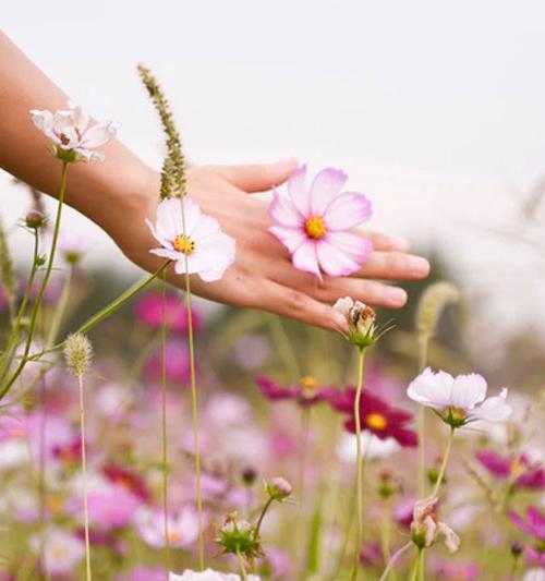 Alergia skórna – rodzaje i objawy